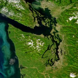 satellite view of the Salish Sea